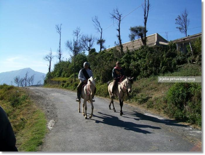 Berkuda di Bromo