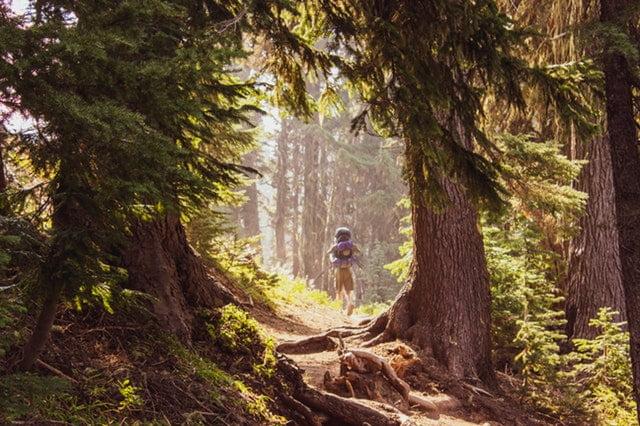 Apa Saja Sih Manfaat Mendaki Gunung?