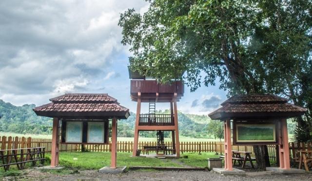 sabana di indonesia