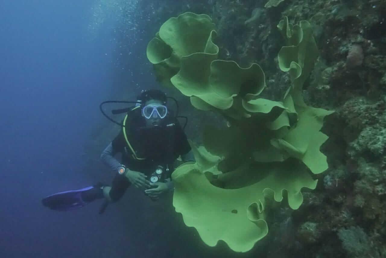 Pulau Kapoposang dan Tawa di Balik Lautan (2)