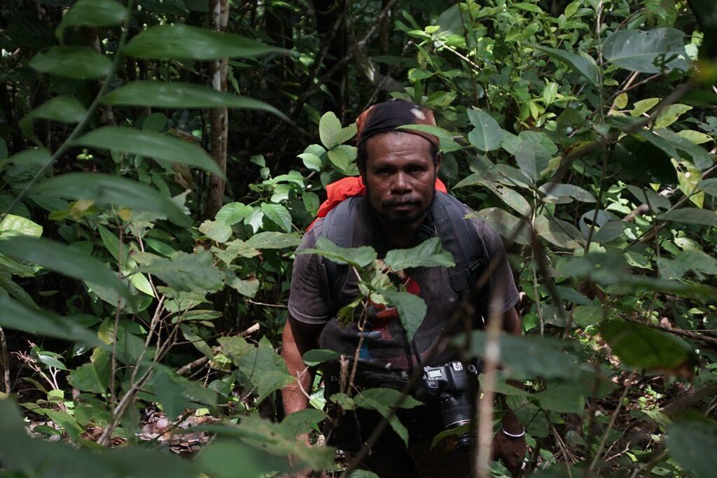 Menyusuri Hutan Saporkren