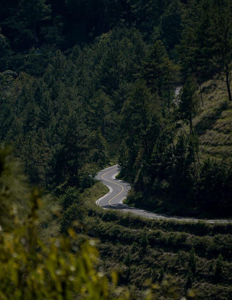 Hubungan Budaya dan Hutan