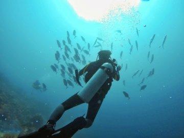 Melindungi Laut, Melindungi Kehidupan Semua Makhluk Hidup