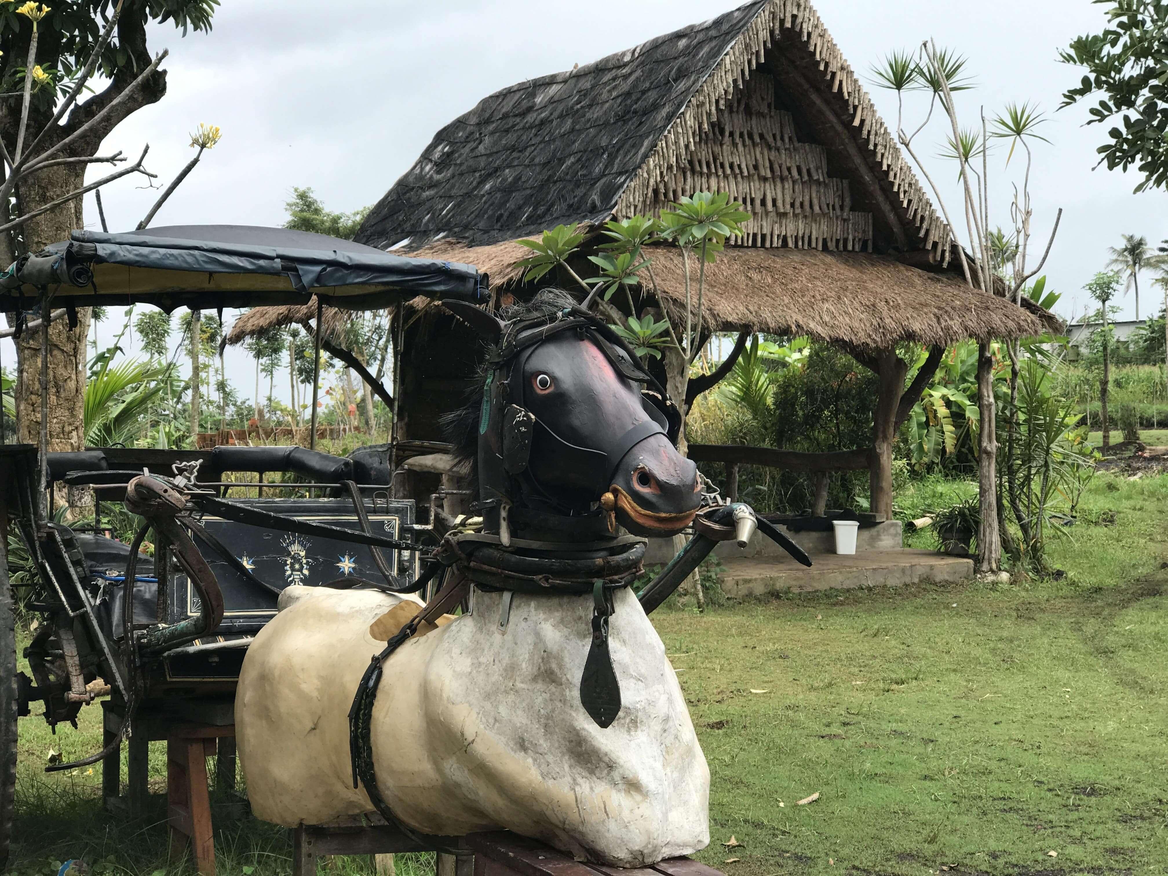 Pan Java Mulyoagung, Tanah Tak Terpakai yang Kini Menjadi Desa Wisata