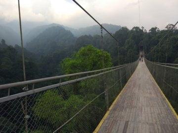 Mencoba Berjalan di Jembatan Gantung Terpanjang se-Asia Tenggara
