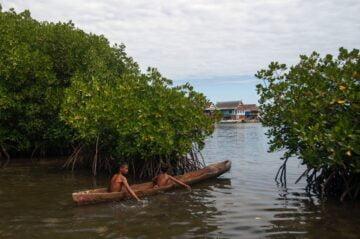 Menelusuri Ekowisata Mangrove di Indonesia