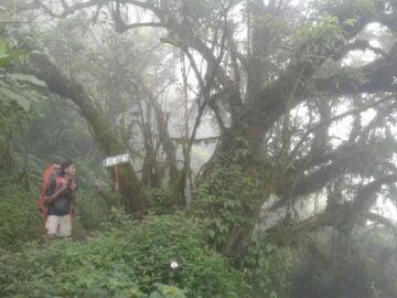 Mendaki Gunung Merbabu lewat Jalur Suwanting