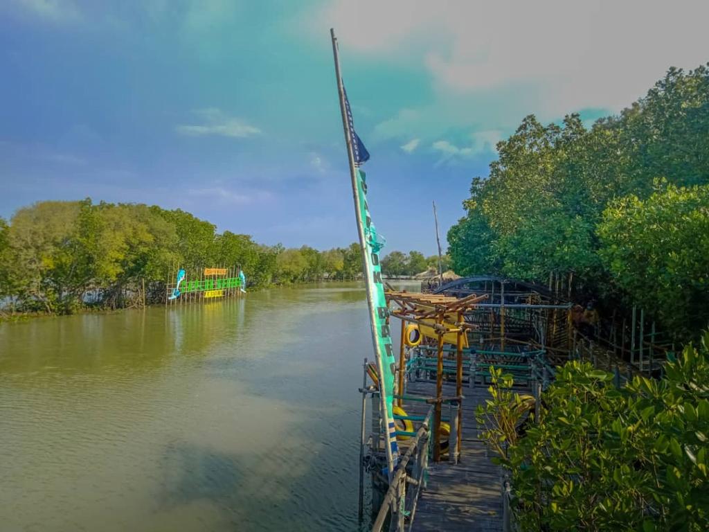 mangrove caplok barong