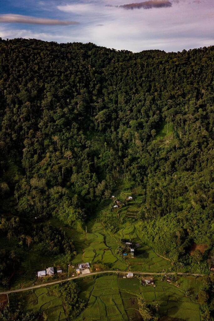 Sawah dan Hutan Nagari Jorong Simancuang